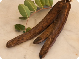 CAROB-A  - a natural ingredient for healthy and appetizing animal food